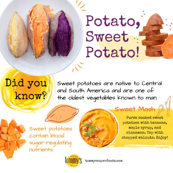 Sweet Potato teaser infographic