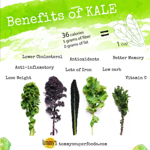 benefits of kale infographic